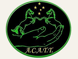 ACATT Australia's Premier Equine massage and therapy college