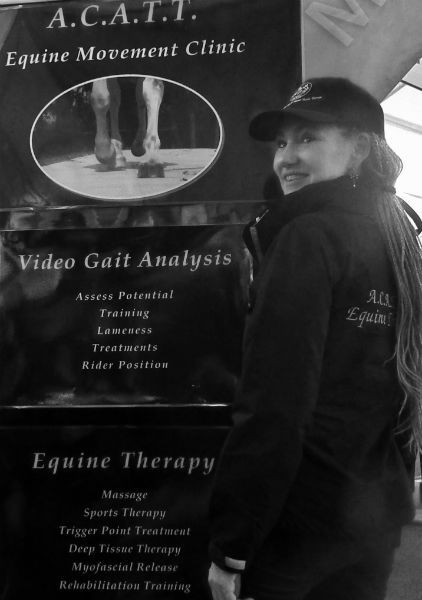 Horse therapy clinic, equine sports massage, horse massage, manipulation, equine gait analysis, herbs, nutrition