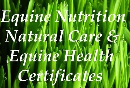 Equine nutrition certificate, Equine Natural health qualification