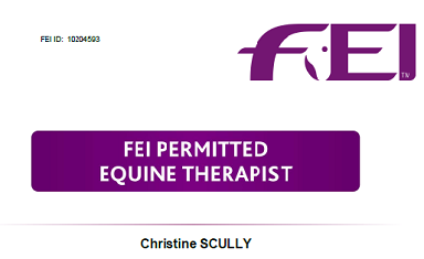 FEI Permitted Equine Therapist