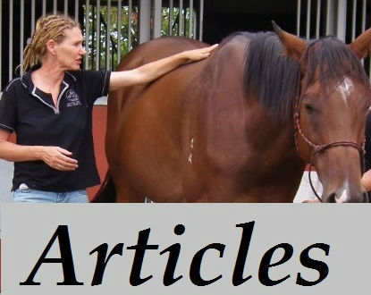 Horse Care Articles