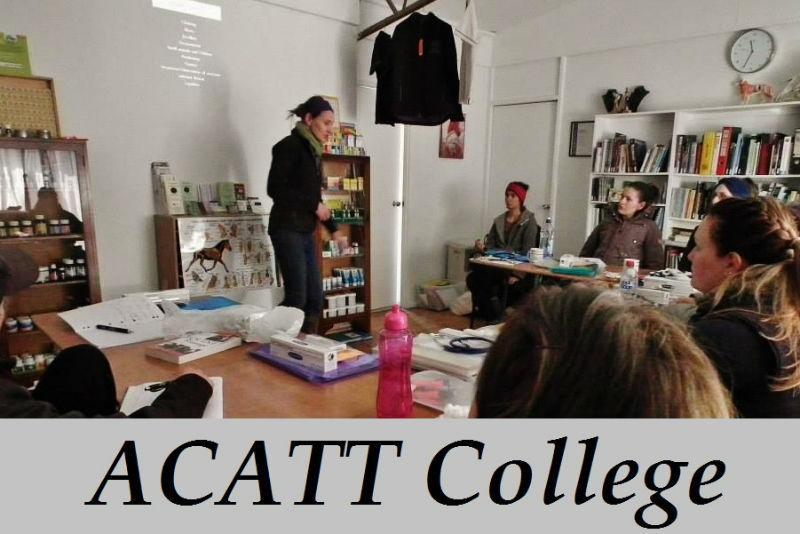ACATT College