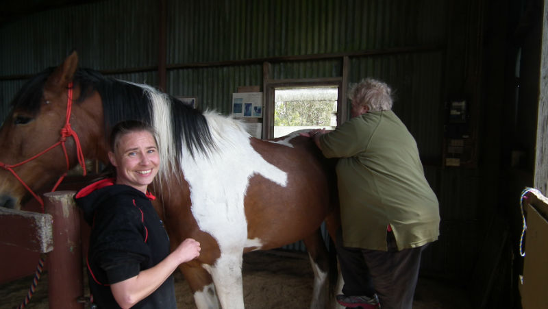 happy Horse massage workshop students