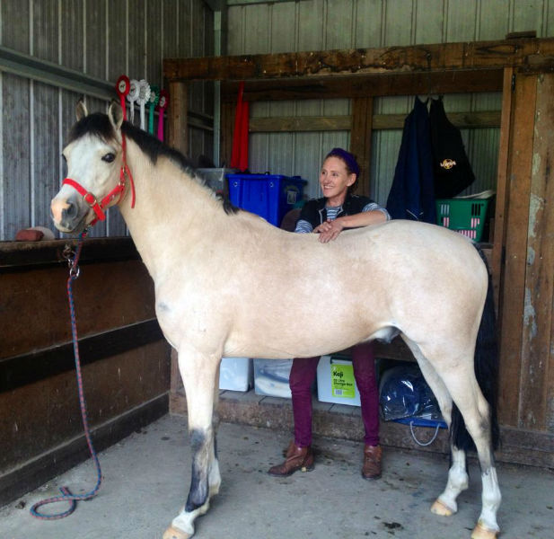 Equine Massage and Movement clinic