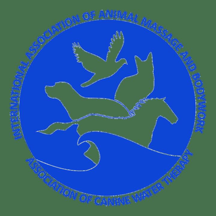 IAAMB Preferred Eduation Provider